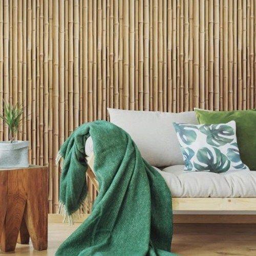 Бамбуковые бои_1