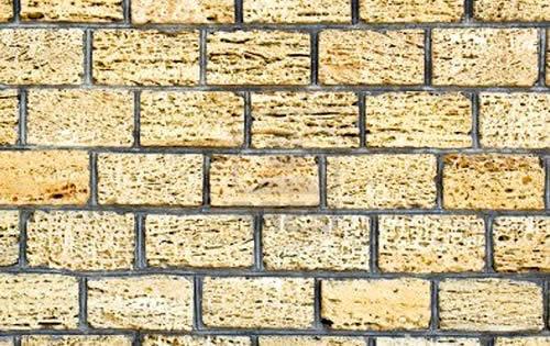 ремонт стен из ракушечника сарая